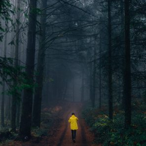 person-wearing-yellow-jacket-walking-in-forest-1895584